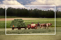 "pe-0164 - ""Making Hay the Mechanical Way"""